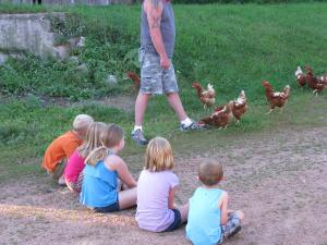 Grandkids waiting for chickens to eat from their hands at my brother's farm.