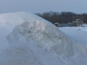 I have a feeling this snow pile is going to be here for awhile. In the background you can see the neighbor's shed that collapsed under the weight of the snow this winter.