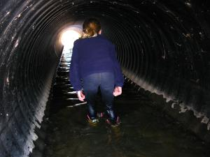 She loved the culvert, too.